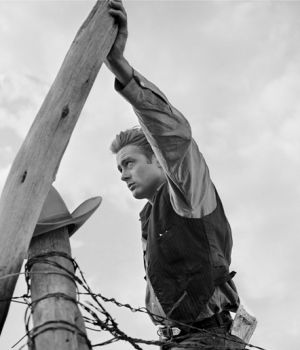 James Dean on Fence Post, Giant 1955 by