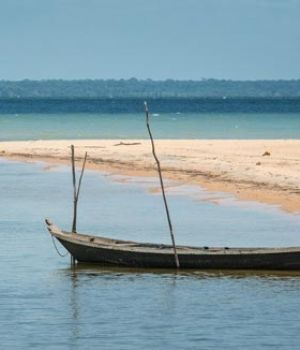 Beach in the Amazon by