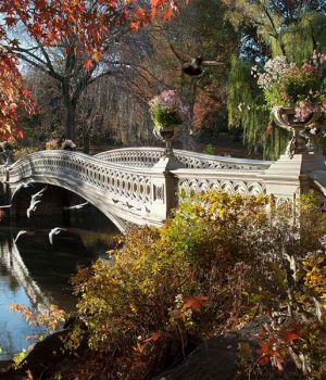 Autumn at the Bow Bridge by