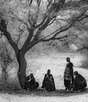 Maasai Women by