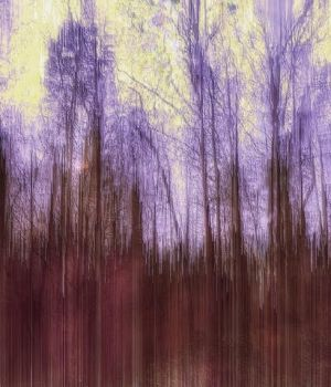 Purple Trees by